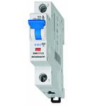 Intreruptor automat C25/1 6kA