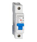 Intreruptor automat modular (MCB) AMPARO 6kA, B 40A, 1-pol