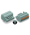 1-conductor female plug; push-button; Snap-in mounting feet; 2.5 mm²; Pin spacing 5 mm; 15-pole; 2,50 mm²; gray