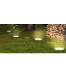 Lemn luminoas LED, buturuga Fetta Legno Culoare lemn natur