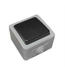 Aparataj gri PT IP54 intrerupator simplu A/R 10A - gri
