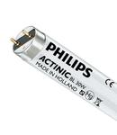 PH Tub Actinic BL 30w/10/T8 (lampa anti insecte)