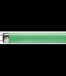 TUB NEON - TL-D 18W Green SLV/25