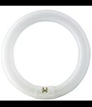 TUB NEON - MASTER TL-E Circular Super 80 32W/830