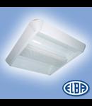 Corpuri de iluminat Fluorescente pentru Montaj Aparent - 2 x 55 W,  FIRA 03 ODEON,  ELBA