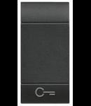 Tasta cu 1 functiune, pentru intrerupator basculant, cu  difuzor si pictograma ,,cheie,, living light, 1 modul, antracit, BTICINO
