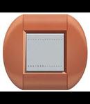 Placa ornament ,2 module, rosu de siena, living light, BTICINO