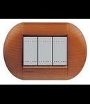 Placa ornament ,3 module, cires american, living light, BTICINO