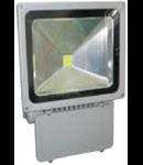 LED Proiector 100W V-TAC Clasic, PREMIUM Reflector 3000K, VT-47100
