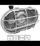 Corp de iluminat antiex compact LED 20W