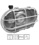 Corp de iluminat antiex LED 20W R