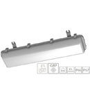 Corp iluminat pentru industria alimentara INS 250 LED 29W