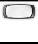 Aplica pentru exterior Francy-2, 1 bec, dulie E27, L:300 mm, H:130 mm, Negru