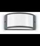 Aplica de exterior Rex-1, 1 bec, dulie E27, L:250 mm, H:120 mm, Antracit