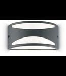 Aplica de exterior Rex-3, 1 bec, dulie E27, L:250 mm, H:120 mm, Antracit