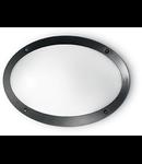Aplica de exterior Maddi 1, 1 bec, dulie E27, D:330 mm, H:230 mm, Negru