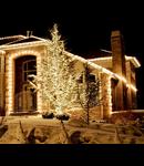 2016 Instalatie extensibila cu 50 becuri Led , L.5 m, IP44,cablu alb,lumina alb rece