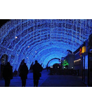 2016 Cordon cu 30 becuri Led,  L.3m, IP44,albastru