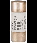 SIGURANTA FUZIBILA CILINDRICA 100A 22X58 GG 500V - 112187
