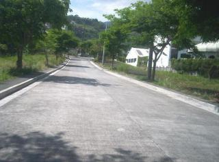 FOR SALE: Lot / Land / Farm Laguna > Los Banos 4