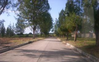 FOR SALE: Lot / Land / Farm Batangas > Lipa City 10