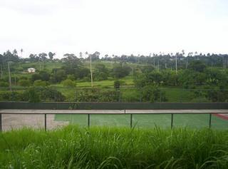FOR SALE: Lot / Land / Farm Cavite 8