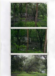 FOR SALE: Lot / Land / Farm Bataan 20