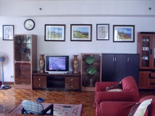 FOR SALE: Apartment / Condo / Townhouse Manila Metropolitan Area 7