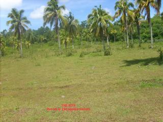 FOR SALE: Lot / Land / Farm Davao