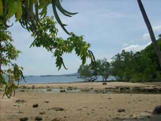 FOR SALE: Beach / Resort Davao 1