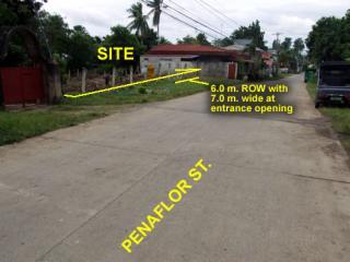Penaflor Subdivision - photo