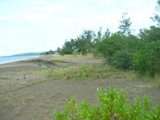 Beach Front 1
