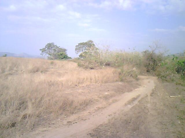 FOR SALE: Lot / Land / Farm Bataan