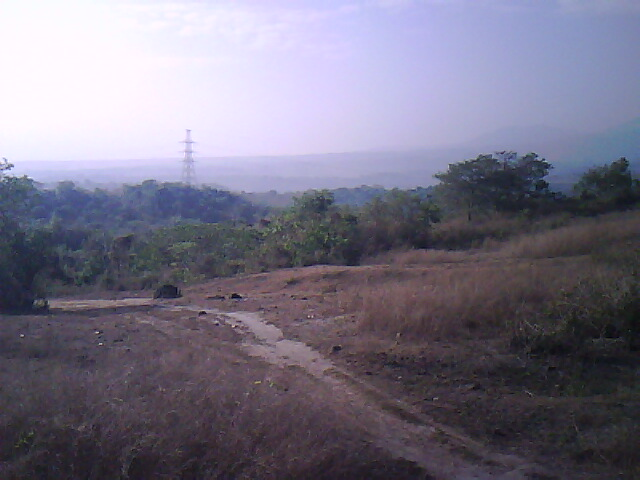 FOR SALE: Lot / Land / Farm Bataan 3