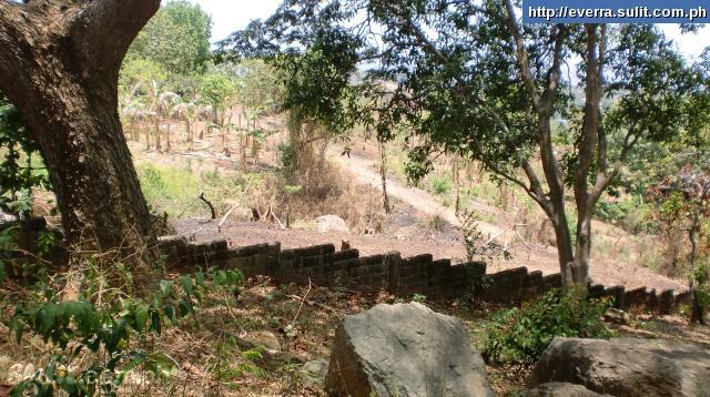 FOR SALE: Lot / Land / Farm Rizal > Antipolo 2