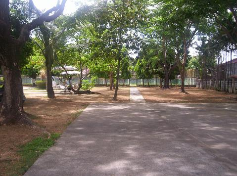 FOR SALE: Lot / Land / Farm Rizal 9