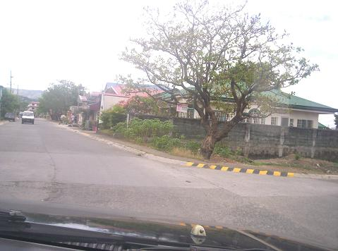 FOR SALE: Lot / Land / Farm Rizal 12