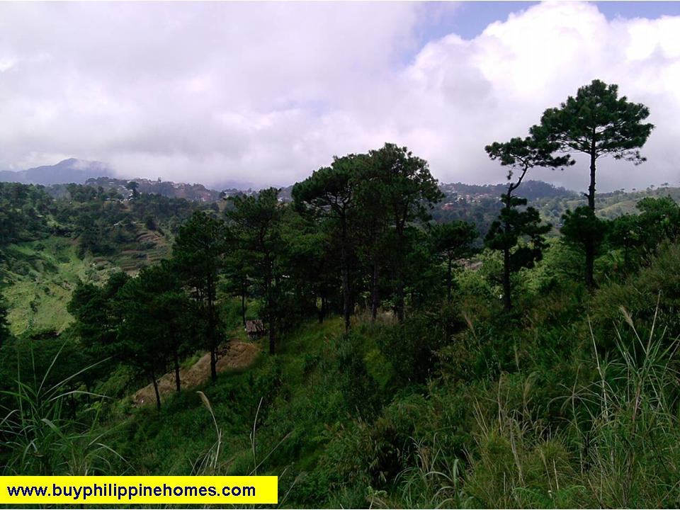 Baguio Mountain House