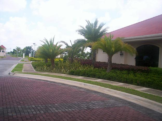 FOR SALE: Lot / Land / Farm Nueva Ecija > Cabanatuan 5