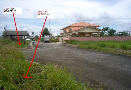 FOR SALE: Lot / Land / Farm Cavite 7
