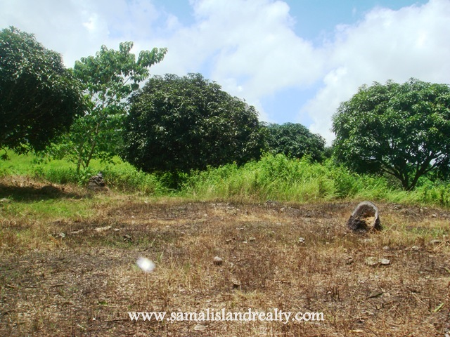 FOR SALE: Lot / Land / Farm Davao del Sur > Samal 2