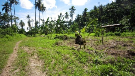 FOR SALE: Lot / Land / Farm Davao >Davao City 3