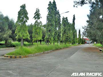 FOR SALE: Lot / Land / Farm Laguna > Calamba 17