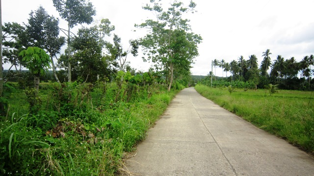 FOR SALE: Lot / Land / Farm Davao