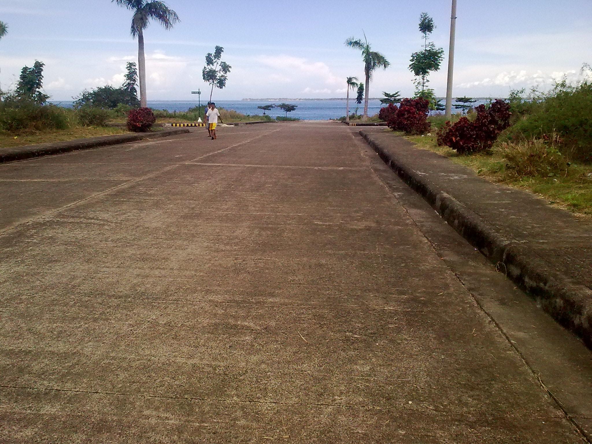 FOR SALE: Lot / Land / Farm Cebu > Mactan 2