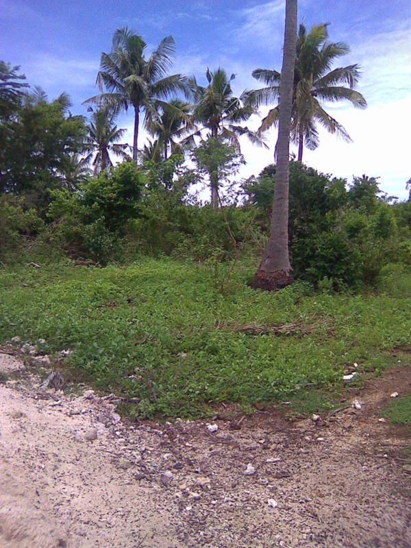 FOR SALE: Beach / Resort Siquijor 2