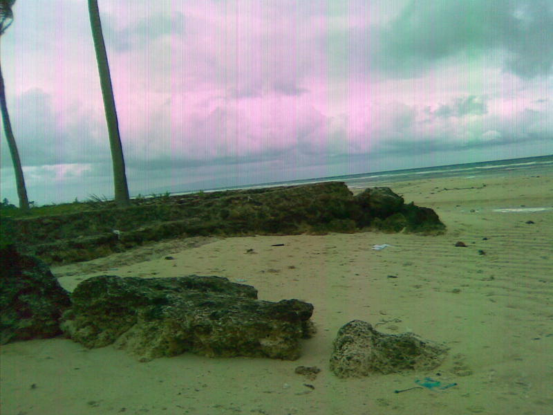 FOR SALE: Beach / Resort Siquijor 3