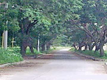 FOR SALE: Lot / Land / Farm Batangas > Batangas City 6