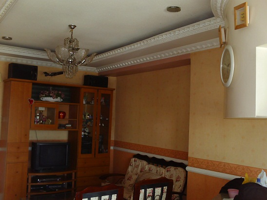 FOR SALE: Apartment / Condo / Townhouse Cebu > Cebu City 1