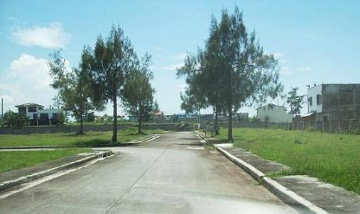FOR SALE: Lot / Land / Farm Cavite > Dasmarinas 13